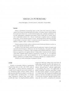 Sekcija za petrokemiju