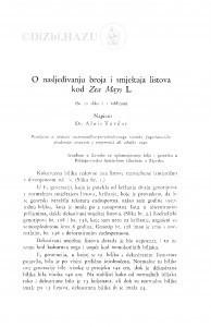 O nasljeđivanju broja i smještaja listova kod Zea Mays L. / Alojz Tavčar