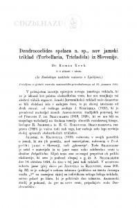 Dendrocoelides spelaea n. sp., nov jamski triklad (Turbellaria, Tricladida) iz Slovenije / R. Kenk