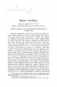 Željezne cianoficeje / V. Vouk