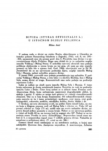 Diviza (Styrax officinalis L.) u istočnom dijelu Pelješca / M. Anić