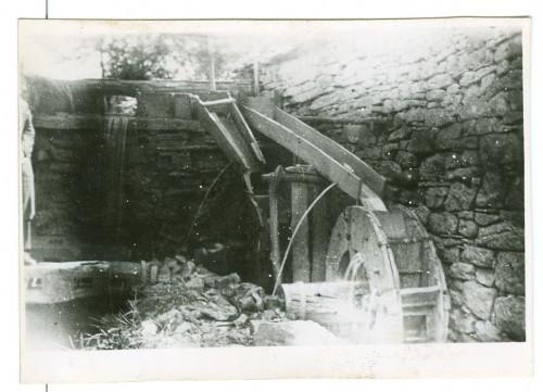 Stupe [Radauš-Ribarić, Jelka (1922) ]