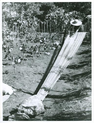 Navijanje osnove: tkalja Mare Gvozdenica
