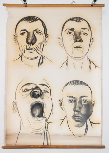 Četiri prikaza nosnih bolesti