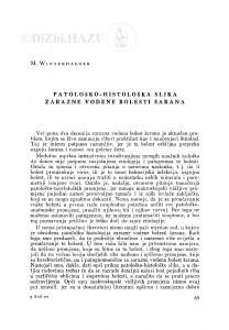 Patološko-histološka slika zarazne vodene bolesti šarana / M. Winterhalter