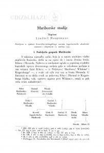 Mariborske studije / Lj. Hauptmann