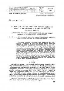 Pleistocenski sisavci (Mammalia) iz spilje Đurkovine (Hercegovina, Jugoslavija) / M. Malez