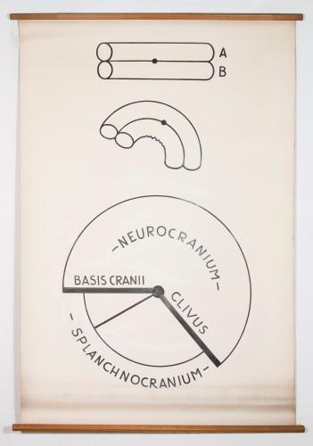 Pritisak neurokranija na splanhnokranij