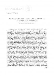 Epigonalni organ selahija, njegova struktura i značenje / T. Varićak
