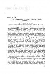 Antocijanofori u epikarpu sremze Prunus Virginiana L. / D. Miličić