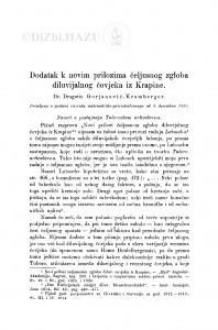 Dodatak k novim prilozima čeljusnog zgloba diluvijalnog čovjeka iz Krapine / D. Gorjanović-Kramberger