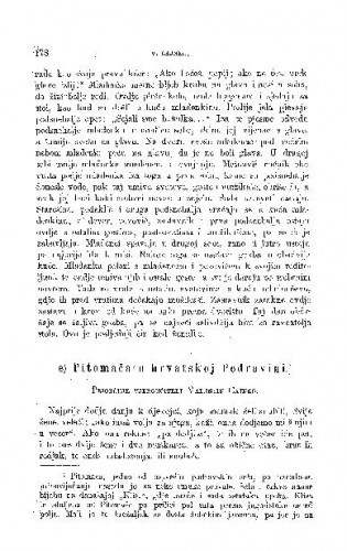 Koprivnička predgradja: Banovac, Bregi, Brežanec, Dubovec i Miklinovec u Hrvatskoj : ženidbeni običaji / R. Horvat