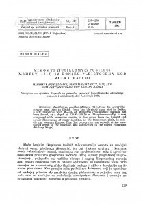 Mimomys (Pusillomys) pusillus (Méhely, 1914) iz donjeg pleistocena kod Mola u Bačkoj / M. Malez