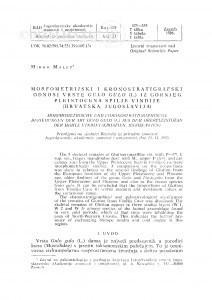 Morfometrijski i kronostratigrafski odnosi vrste Gulo gulo (L.) iz gornjeg pleistocena spilje Vindije (Hrvatska, Jugoslavija) / M. Malez