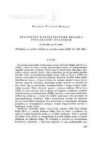 Anatomske karakteristike biljaka inficiranih stolburom / B. Plavšić-Banjac