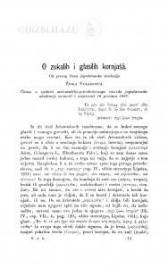 O zukalih i glasilih kornjašâ / Ž. Vukasović