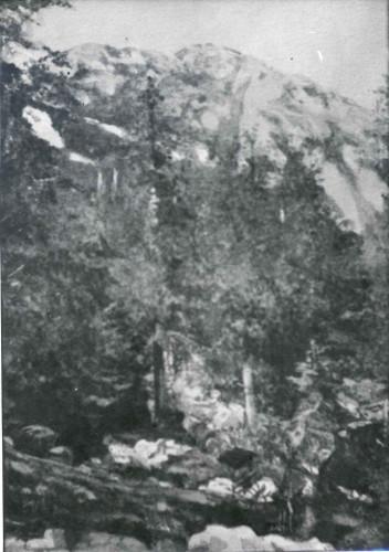 Raškaj, Slava (1877-1906) : Risnjak