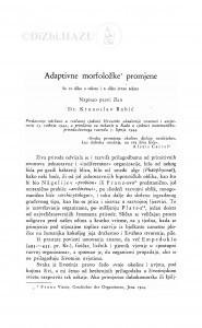 Adaptivne morfoložke promjene / Krunoslav Babić