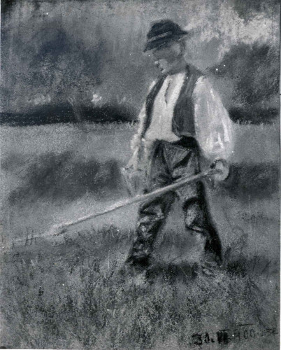 Raškaj, Slava(1877-1906): Dječak s kosom ]