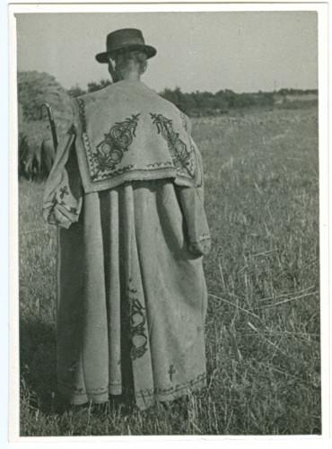 Pastir s leđa [Ižgum, Marija  ]