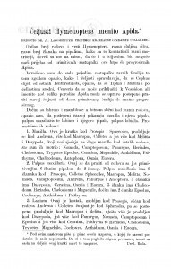 Čeljusti Hymenoptera imenito Apida / A. Langhoffer