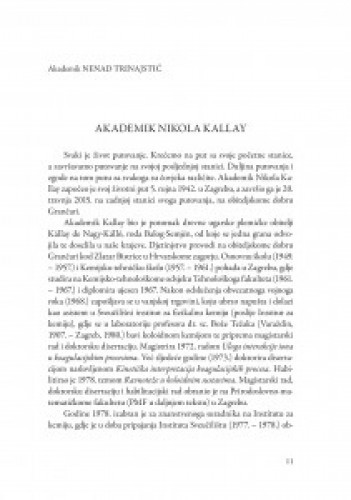 Akademik Nikola Kallay / Nenad Trinajstić